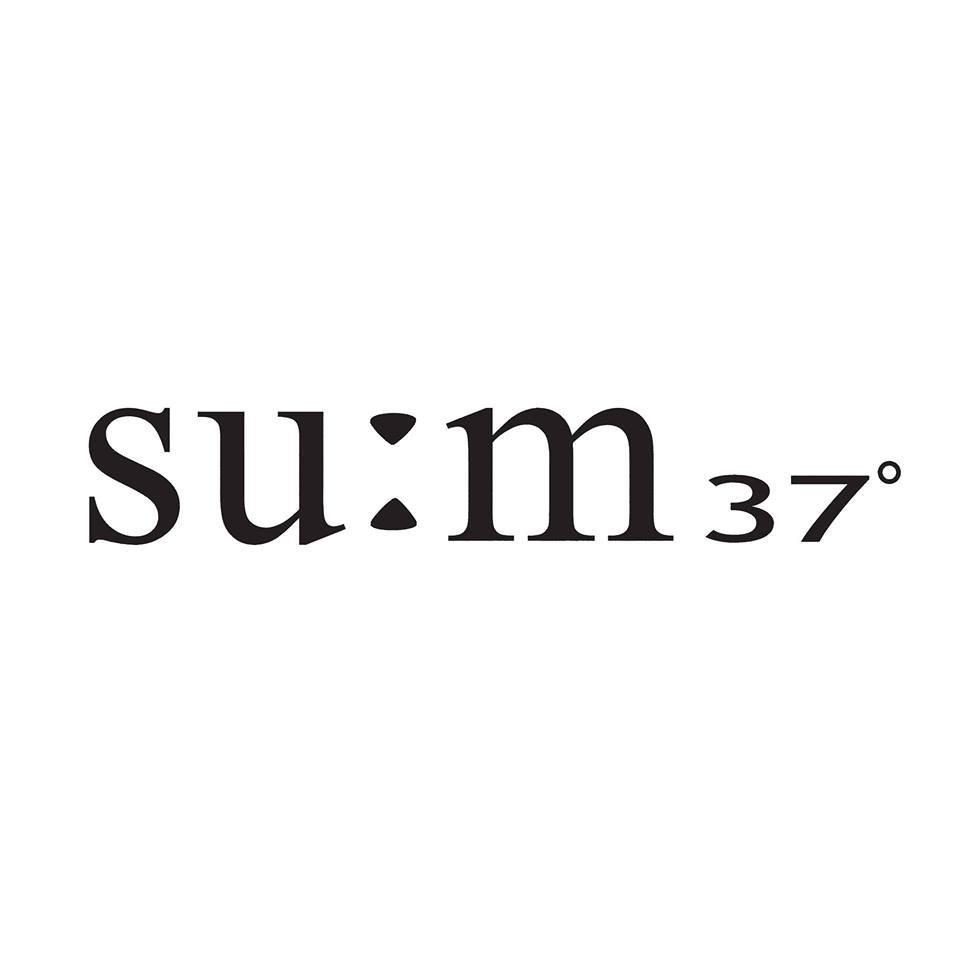 Logo sum 37