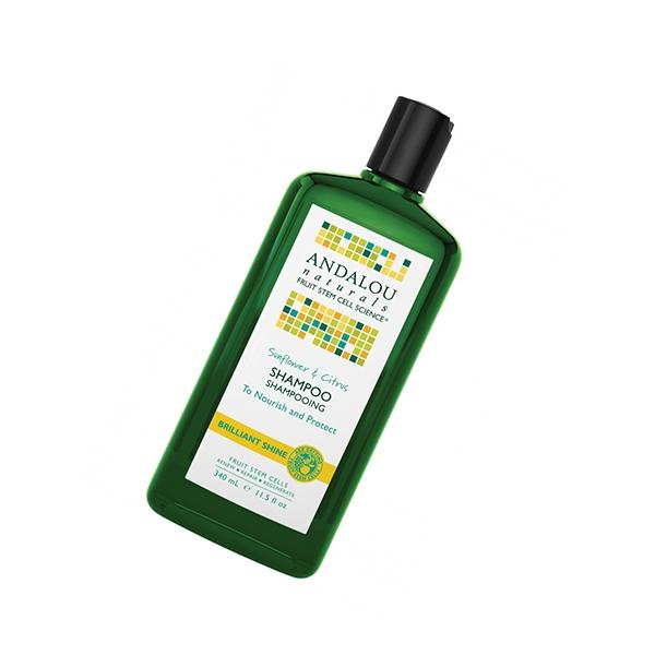 Sunflower   citrus brilliant shine shampoo
